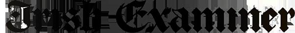 IE_logo_FN