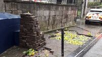 Cork street pavements dug up and filled with flowers in bizarre act
