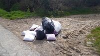 Louth sees surge in illegal dumping across the county