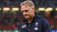 Joe Schmidt missing 'the adrenalin rush' of coaching at the highest level