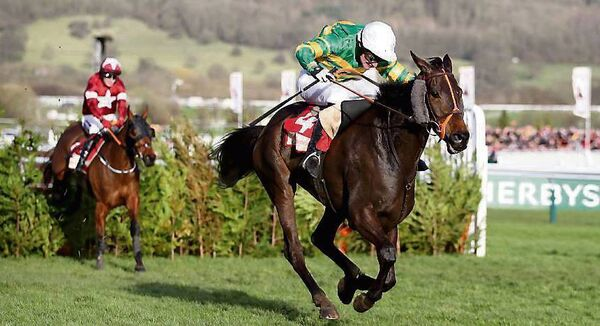 Easysland could possibly develop into a Gold Cup candidate. Picture: INPHO/Dan Sheridan