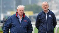 Tom Hogan Q&A: 'Training racehorses can be months of hard work for moments of glory'