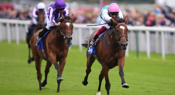 Enable (right) ridden by Frankie Dettori wins the 2019 Darley Yorkshire Stakes. Photo: Nigel French/PA Wire