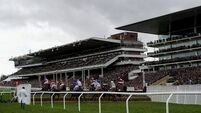 Cheltenham should have been behind closed doors, says horse racing chief