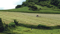 Financial advice for farmers: Irish land price follows the economy