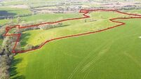 Strong interest and offers in this 40-acre East Cork holding