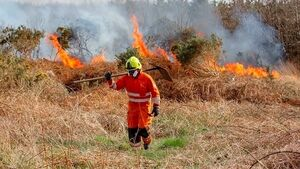 Illegal fires distract the emergency services from their vital work