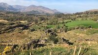 €2,000 an acre sought for large hill farm on Beara peninsula