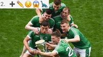 Quiz: Name these ten Limerick hurlers, past and present