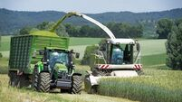 Denis Lehane: It will be a hungry summer for silage contractors