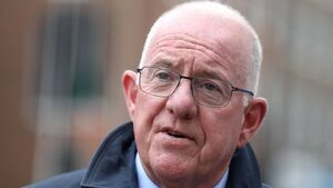 Offences Against the State Act set for review - Flanagan