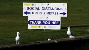 Social distancing likely to be halved to 1m in North