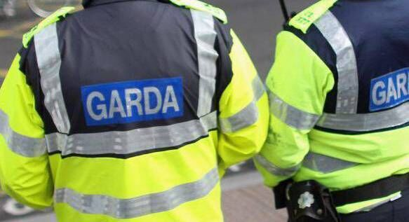 A number of Garda units took part in the operation.