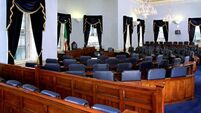 High Court rules first lawful meeting of Seanad must have 60 members