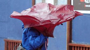 Yellow wind warning for seven counties this weekend