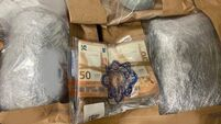 Gardaí seize suspected cannabis herb and €11,000 cash in Drogheda
