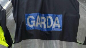 Gardaí appeal for witnesses to incident on M4