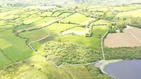 19-acre lakeshore West Cork holding for sale in dairying country