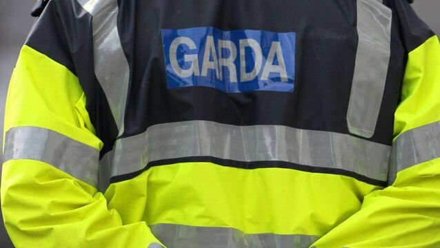 Garda sergeant who investigated child sex abuse claim sues State over alleged harassment