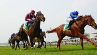 Royal Ascot tips: Skardu makes plenty of each-way appeal in Queen Anne Stakes