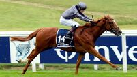 Serpentine makes all to give Aidan O'Brien record eighth Derby victory