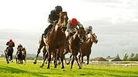 Armory can give Aidan O'Brien 12th 2000 Guineas win