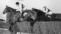 Half a century after his death Arkle still heads the field of greatness