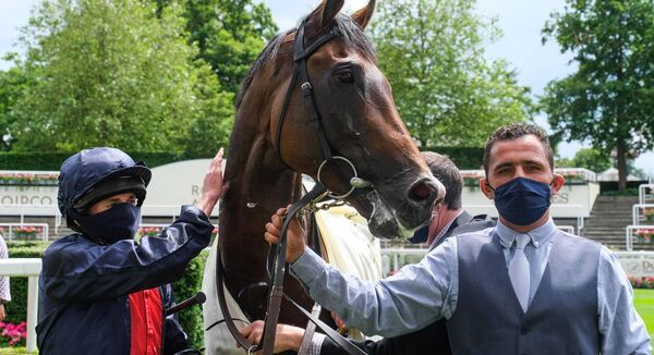 Aidan O'Brien seems unsure who his primary contender is but when it emerged Thursday that Ryan Moore (above, with Russian Emperor at Ascot) would partner Mogul it was inevitable his price would contract. Photo Healy Racing.