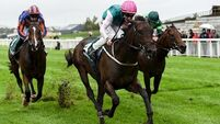 Siskin in 'great nick' ahead of Classic date, insists Colin Keane