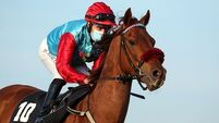 'Complacency' biggest challenge for racing warns senior medical officer Dr Pugh