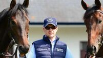 Aidan O'Brien happy with Arizona ahead of Guineas date