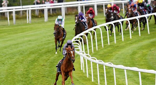 Serpentine and Emmet McNamara are well clear of their rivals as they round Tattenham Corner on Saturday. Serpentine made virtually all in a style reminiscent of Cauthen on Slip Anchor back in 1985 to give trainer Aidan O'Brien an eighth Epsom Derby victory, a record number of wins. 	Picture: Healy Racing