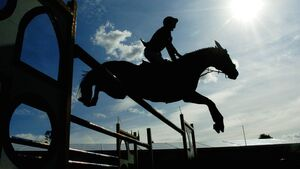 Limerick report: Filon D'oudairies launches return of National Hunt racing in style
