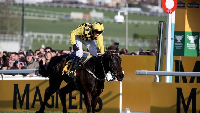 Al Boum Photo and Cyrname share top spot in jumps classification
