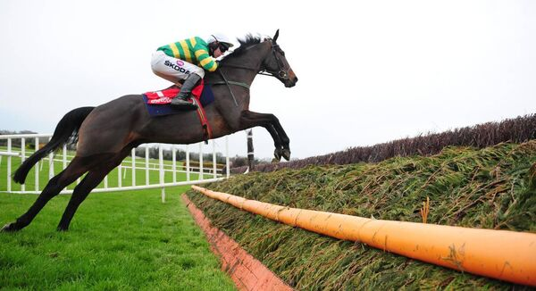 Ballyoisin and Mark Walsh win the Grade 2 Fortria Steeplechase at Navan last November. There are 24 National Hunt meetings planned for 12 racecourses. Healy Racing Photo