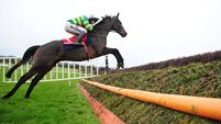 Horse Racing Ireland publishes programme for jumps fixtures
