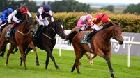 Patrick Sarsfield defies 15lb hike to land Navan spoils