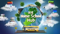 Learner Dad: RTÉ, any chance you could run Homeschool Hub over the summer?