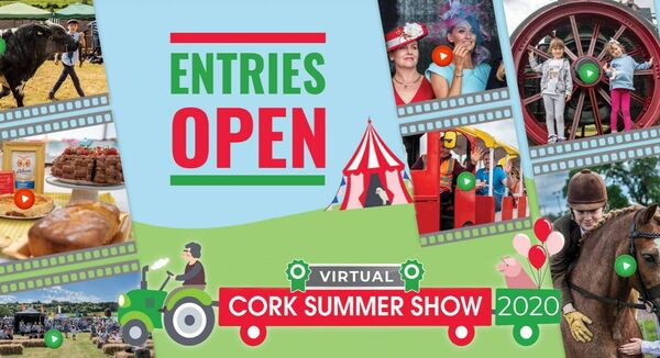 virtual cork summer show logo