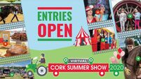 After 215 years, a Virtual Cork Summer Show