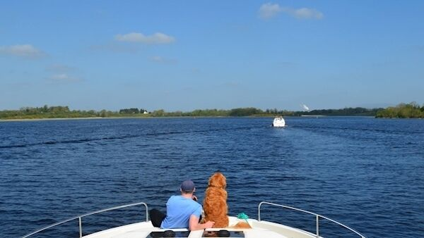 Tom Breathnach cruising along the River Shannon with his dog.