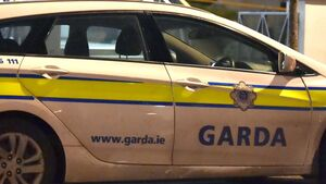 Jail as man pleads guilty to spitting at garda patrol car twice
