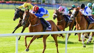 Leopardstown: Delphi dominates from the front