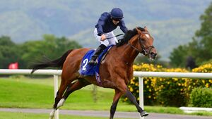 Leopardstown and Limerick tips: Keats set for quick follow-up