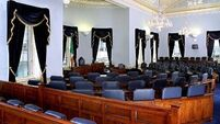 Seanad sits for first time in wake of referendum