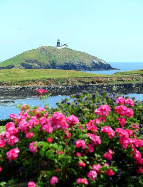 Ballycotton lighthouse in the sunshine Picture: Eddie O'Hare