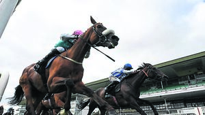 Galway Races: All quiet on the western front
