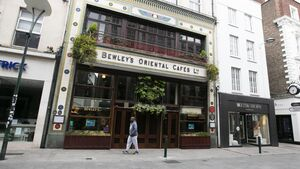 'Time for the Govt to step in' and take over Bewley's, says conservation group