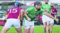 Cork Premier IHC: Brown dismissal proves cost as Aghada defeat Youghal