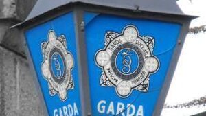 Man arrested after more than €600,000 worth of drugs seized in Kildare